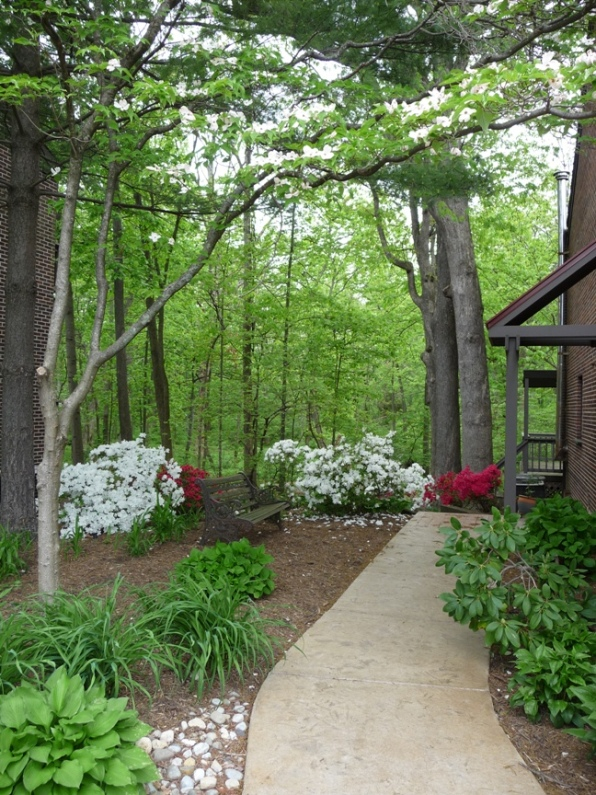 Beautiful wooded office location during Spring is breathtaking.